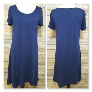 Stitch Fix Skies are Blue Shift A-Line Dress